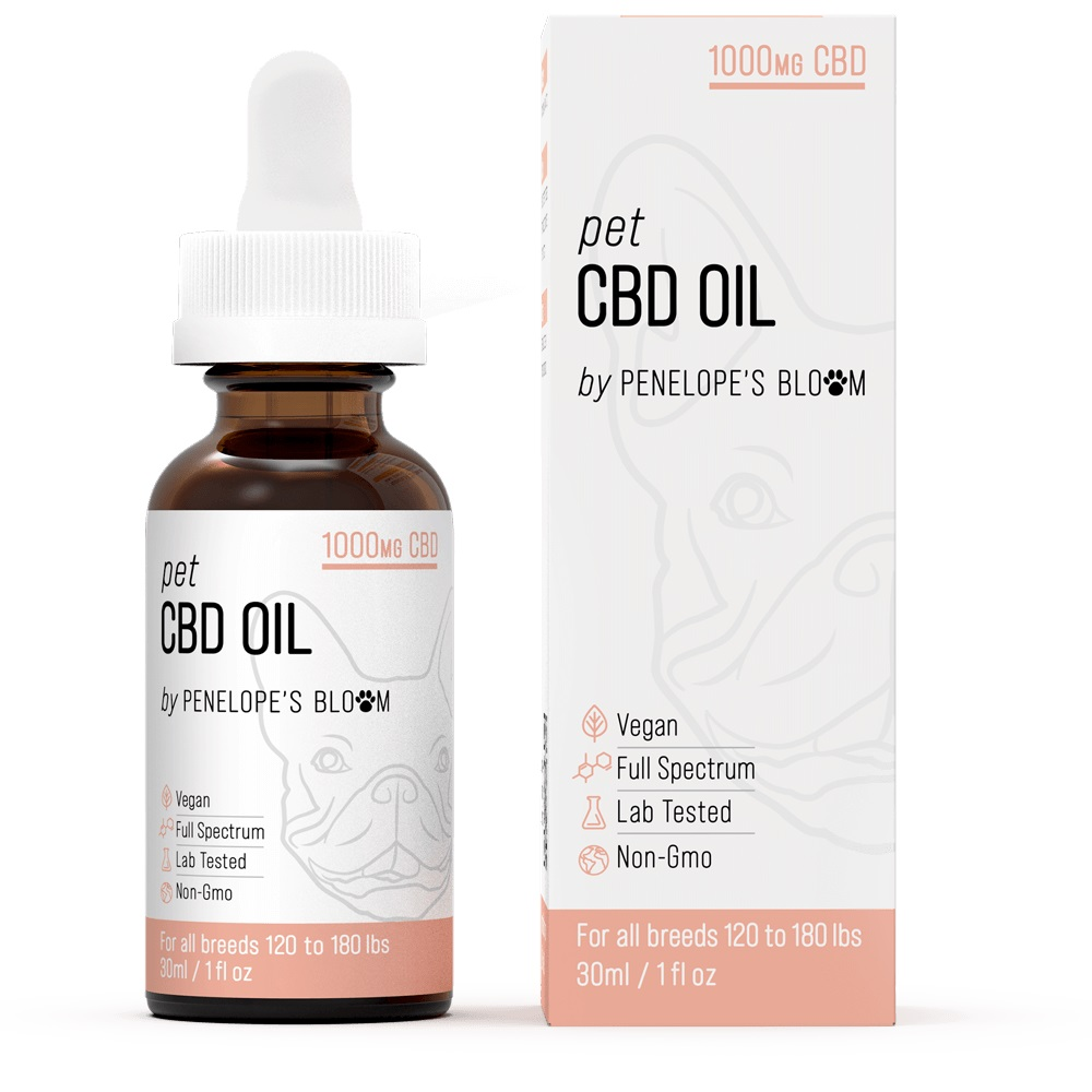 CBD Oil For Anxiety and Stress In Cats - Use This Only If You Want Your Cat Healthy and Happy